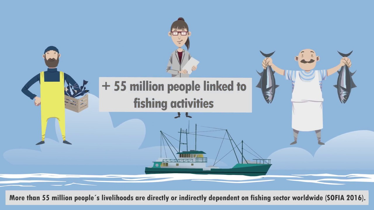 Promoting better Ocean Governance and Sustainable Fisheries